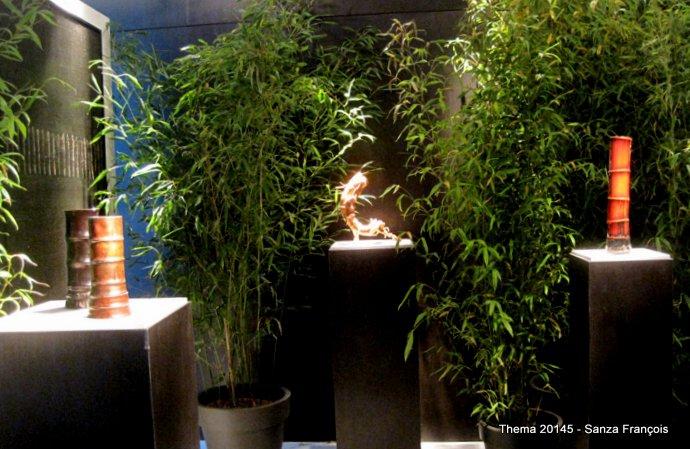 7 bambou (13).JPG