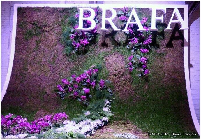 1-0 BRAFA 2 (1).JPG